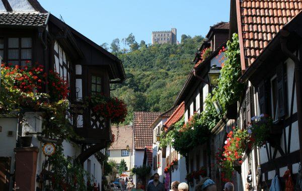 Muttertagsfahrt in die Pfalz