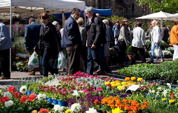 Südtirol mit Blumenfest in Bozen